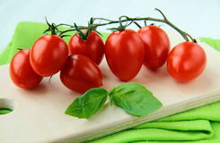 Cherry tomatoes and basil Stock Photography