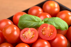 Cherry Tomatoes with Basil Royalty Free Stock Images