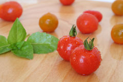 Cherry tomatoes and basil. On a wooden chopping board Royalty Free Stock Images