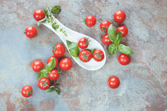 Cherry tomatoes and basil Royalty Free Stock Photos