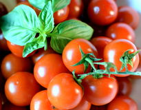 Cherry tomatoes and basil leaves. Grape cherry tomatoes with basil leaves Stock Photo