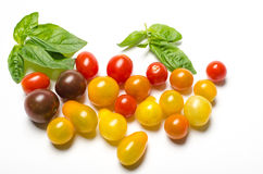 Cherry tomatoes and basil leaves on white backgrou Stock Photos