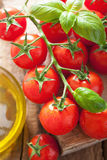 Cherry tomatoes basil and olive oil  Stock Photos