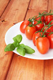 Cherry tomatoes and basil on white plate Stock Images