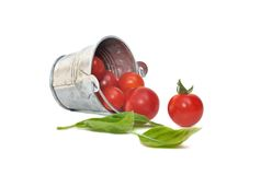 Cherry tomatoes with basilic Stock Images