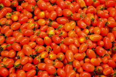 Cherry tomatoes in basket at the market. Cherry tomatoes at the market royalty free stock photos