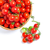Cherry tomatoes in a basket and on a twig Royalty Free Stock Photos