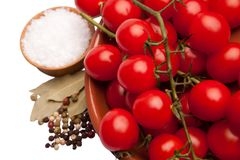 Cherry tomatoes in a bowl with sea salt and pepper Stock Images