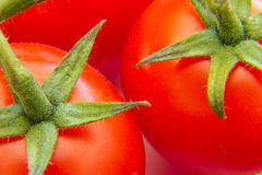 Cherry tomatoes on a branch Royalty Free Stock Images