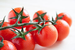 Cherry tomatoes on branch Stock Photos