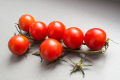 Cherry tomatoes on branch Stock Photography