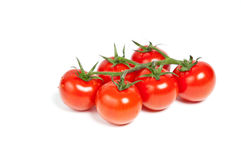 Cherry tomatoes on a branch. Isolated on white Stock Images