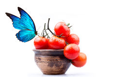Cherry tomatoes and butterfly Royalty Free Stock Photos
