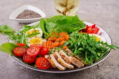 Cherry tomatoes, chicken breast, eggs, carrot, salad with arugula. Plate with a keto diet food. Cherry tomatoes, chicken breast, eggs, carrot, salad with arugula royalty free stock photography