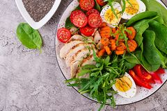 Cherry tomatoes, chicken breast, eggs, carrot, salad with arugula. Plate with a keto diet food. Cherry tomatoes, chicken breast, eggs, carrot, salad with arugula stock images