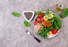 Cherry tomatoes, chicken breast, eggs, carrot, salad with arugula royalty free stock image