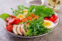 Cherry tomatoes, chicken breast, eggs, carrot, salad with arugula. Plate with a keto diet food. Cherry tomatoes, chicken breast, eggs, carrot, salad with arugula stock image