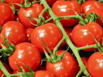 Cherry tomatoes close-up Stock Photography