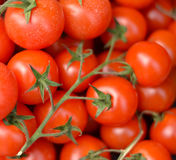Cherry tomatoes close-up Stock Image