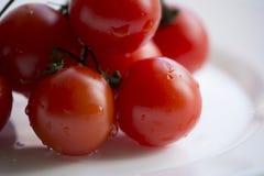 Cherry Tomatoes Closeup Fotos de archivo