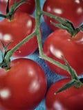 Cherry tomatoes closeup. Closeup of cherry tomatos Royalty Free Stock Photography