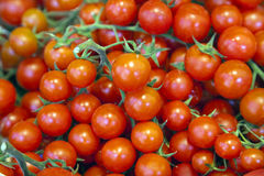Cherry Tomatoes on a counter Stock Image