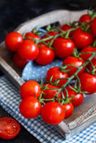 Cherry tomatoes on a dark background Royalty Free Stock Photo