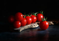 Cherry tomatoes on a dark background Stock Image