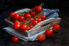 Cherry tomatoes on a dark background Royalty Free Stock Photography