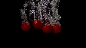Cherry tomatoes falling in water on black background. In slow motion stock video