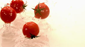 Cherry tomatoes falling on white wet surface stock footage
