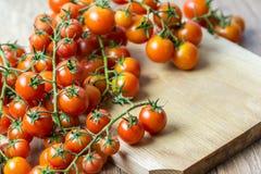 Cherry Tomatoes fresco Fotografía de archivo libre de regalías