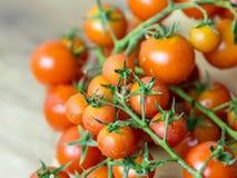 Cherry Tomatoes fresco Imagen de archivo libre de regalías