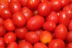 Cherry Tomatoes fresco Fotos de Stock Royalty Free