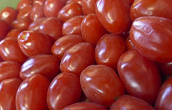 Cherry Tomatoes Fresh Picked Stock Photo