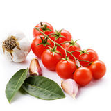 Cherry tomatoes garlic and bay leaf Stock Photos