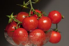 Cherry tomatoes in a glass bowl. On dark background stock images