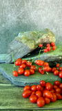 Cherry tomatoes 2. Cherry tomatoes on green/grey stones Royalty Free Stock Photos