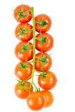 Cherry Tomatoes II Stock Photo