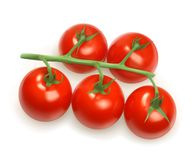 Cherry tomatoes illustration Stock Photography