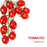 Cherry tomatoes isolated on white. Background Stock Photo