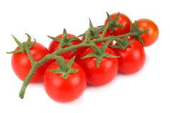 Cherry tomatoes isolated on a white background Stock Images
