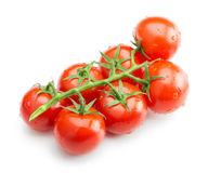 Cherry tomatoes isolated on the white background Stock Image