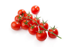 Cherry tomatoes isolated on white background. Cherry tomatoes. Ripe fresh cherry tomatoes on branch isolated on white background Royalty Free Stock Image