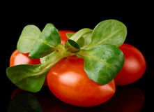 Cherry tomatoes with leaf of corn salad Stock Photos