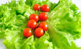Cherry tomatoes and lettuce Royalty Free Stock Photos