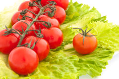 Cherry tomatoes with lettuce. Small tomatoes (cherry) with lettuce Stock Photo