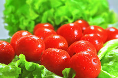 Cherry tomatoes and lettuce Stock Photos