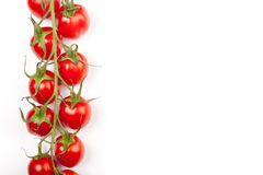 Cherry tomatoes line. Some cherry tomatoes in a horizontal line on the stem leaving copyspace royalty free stock photos