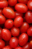 Cherry tomatoes. Macro shot of cherry tomatoes background Royalty Free Stock Image